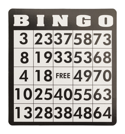 raiser: Bingo Card Without Game Pieces Isolated on White Background.