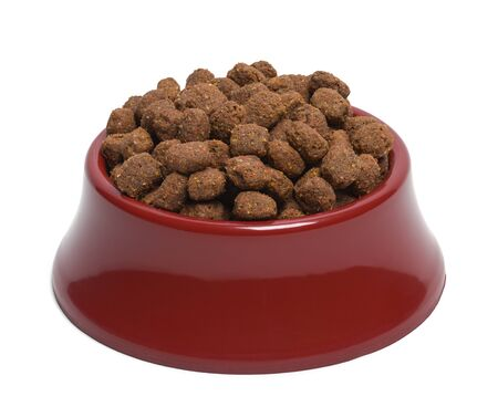biscuts: Red Bowl of Dog Food Isolated on White Background.