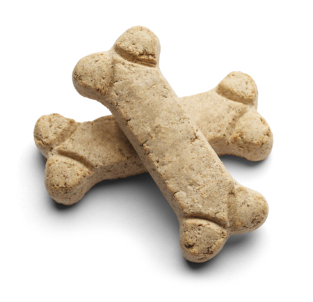 dog treat: Two blank dog bones stacked criss cross with copy space isolated on a white background.
