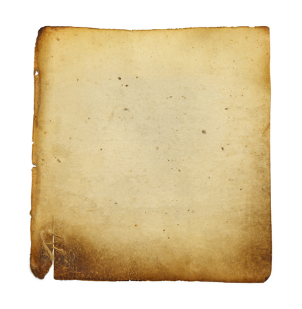 vellum: Old Blank Vellum Paper Isolated on White Background.