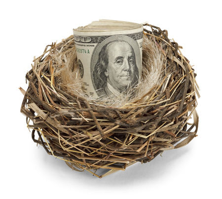 global retirement: Retirement nest egg of cash in a nest isolated on a white background