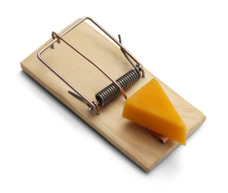 mouse trap: Mouse Trap with Cheddar Cheese Isolated on White Background. Stock Photo