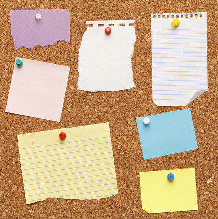 board: Different papers tacked on cork board. Stock Photo