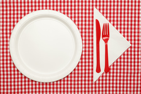 textile image: Paper Plate on Checkered Table Cloth wtih Plastic Utnesils and Napkin.
