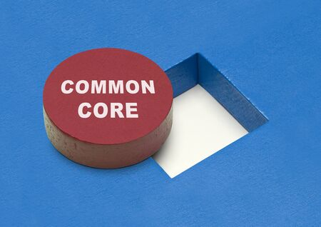 Commone Core Circle Block with Square Hole. Stock Photo