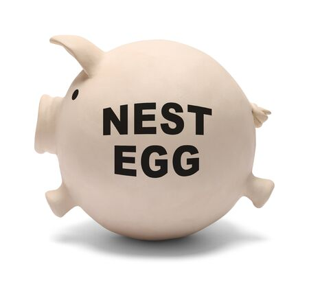 Fat Nest Egg Piggy Bank Isolated on White Background.