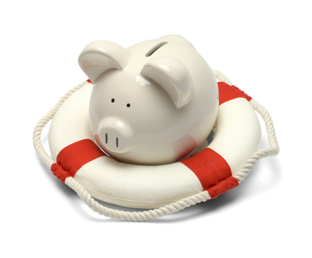 Pig in a Life Preserver Isolated on White Background.