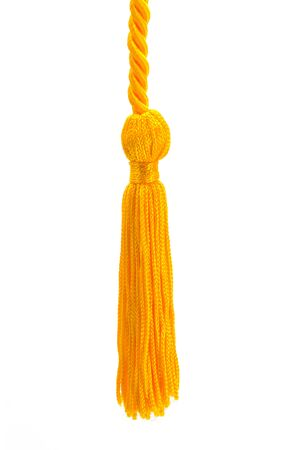 Small Gold Tassel Cut Out on a White Background.