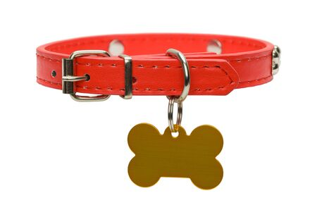 Red Leather Dog Collar with Gold Dog Tag Isolated on White.