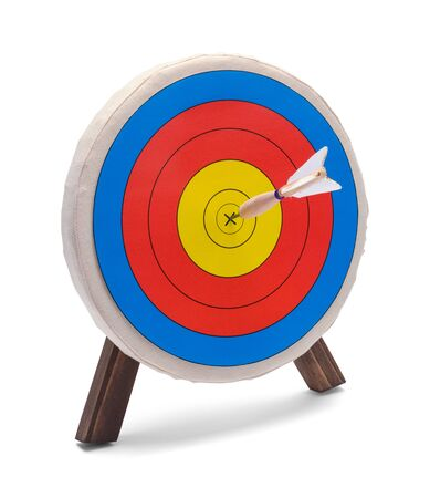 Dart in Round Target Isolated on White Background.