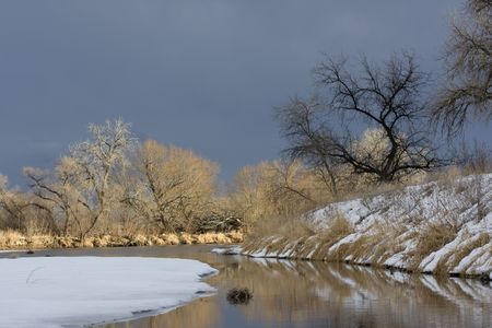 south platte river: Riparian forest along South Platte River in eastern Colorado Stock Photo