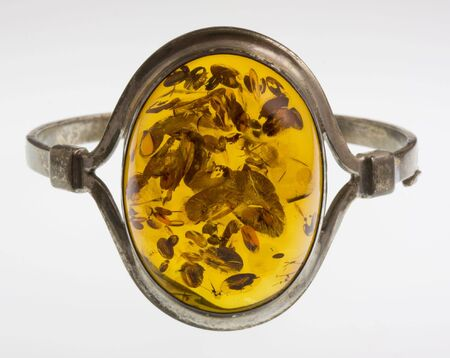 A bracelet with a large amber from Baltic Sea in Poland, a silver frame, seeds, spores and other plant parts trapped in a resin