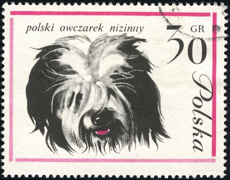 lowland: Polish lowland sheepdog (PON) on a vintage, canceled  post stamp from Poland