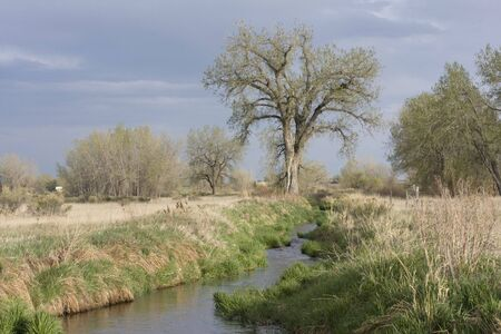 narrow irrigation ditch with fast flowing water, springtime, Colorado Stock Photo - 3054091