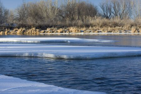 south platte river: partially frozen South Platte River, Colorado, with riparian trees in background