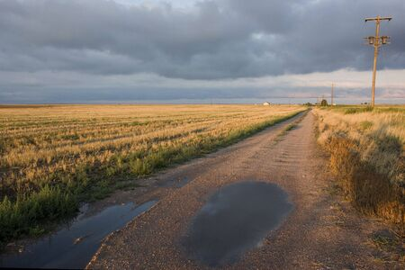 dirt: dirt farm road in Colorado after havy rain with harvested wheat fields in sunset light