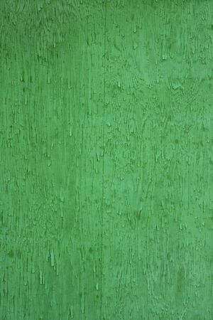 very green rough wooden wall of a farm building Stock Photo - 3448228