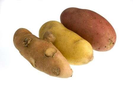 elongated: three elongated fingerling potatos of different varieties grown in Colorado, isolated on white background