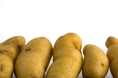 fingerling: new fingerling potatos composed as a bottom border against white background, copy space Stock Photo