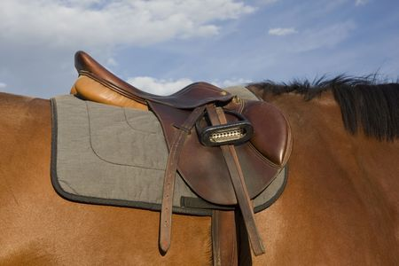 English style saddle, dusty after jumping training,  on a bay horse against sky