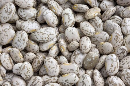 backround of pinto beans with mottled skin, also known as
