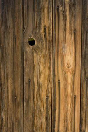 knothole: weathered wood of old barn wall with nails, staple and knothole