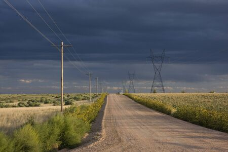 typical dirt road in eastern Colorado farmland lined by power lines and sunflowers, late summer with stormy sky Stock Photo - 3706709