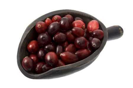 fresh cranberries on a primitive, wooden scoop, isolated on white Stock Photo - 3851787