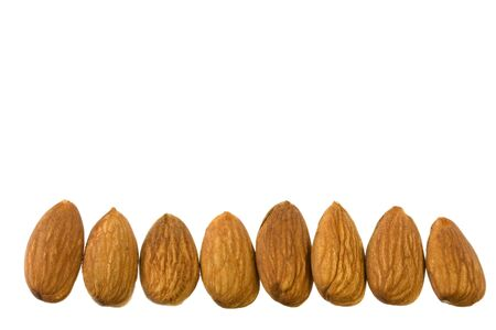 shelled: a row of shelled almond nuts isolated on white