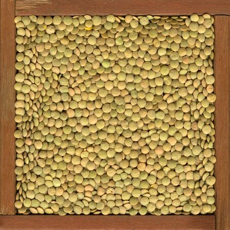 green lentils background in  a primitive, wooden frame or box Stock Photo - 4289821