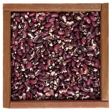 anasazi: purple and white spotted Anasazi beans in a primitive square wooden box or frame, isolated