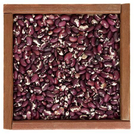 anasazi: viola e bianco macchiato Anasazi fagioli in una scatola di legno quadrato primitivo o telaio, isolati Archivio Fotografico
