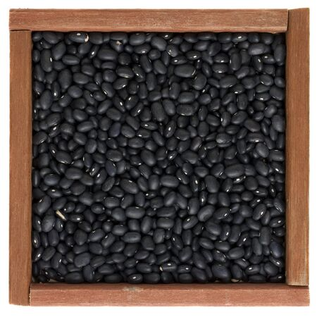 turtle bean: black turtle beans in a square primitive, wooden, box or frame isolated on white