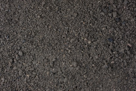 cultivated garden moist top soil background with clay and sand dominant components