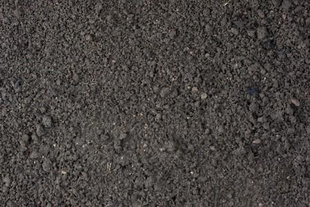soil: giardino coltivato top suolo umido sfondo con argilla e sabbia dominanti