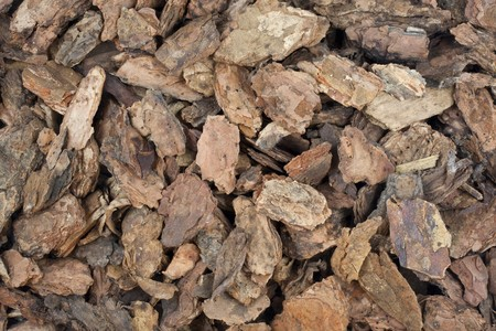 bark mulch: background of coarse western bark nuggets used for gardening and landscaping