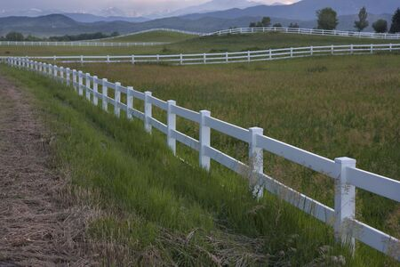 green horse pasture with white fences at foothills of Rocky Mountains in northern Colorado at dusk Stock Photo - 5139151