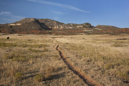 cattle trail in Red Mountain Open Space, semi desert landscape in northern Colorado near Wyoming border, late summer Stock Photo - 5573858