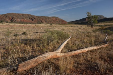 Red Mountain Open Space, semi desert landscape in northern Colorado (Laramie foothills) near Wyoming border, late summer Stock Photo - 5636042