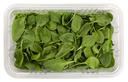'baby spinach': fresh green baby spinach in a clear plastic grocery box isolated on white with clipping path Stock Photo