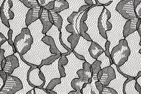 veters: patroon van de zwarte kant weefsel met bloem motief tegen een witte achtergrond