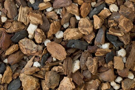 bark mulch: background of orchid bark mix, contains fir bark, charcoal and sponge rock