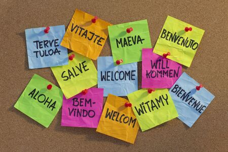 contrasty: welcome in a dozen of languages (Finnish, Slovak, Tahitian, Italian, Latin, English, German, Hawaian, Portuguese, Dutch, Polish, French) - cloud of colorful sticky notes on cork bulletin board, low angle contrasty light