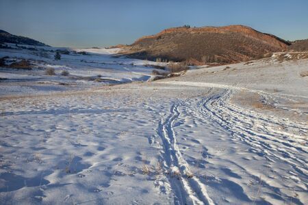 fort collins: winter trail with footprints, cross country ski and snowshoe tracks at foothills of Rocky Mountains near Fort Collins, Colorado