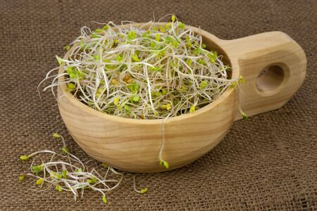 broccoli, radish and clover sprouts in a wooden rustic bowl, burlap background Stock Photo - 6255261