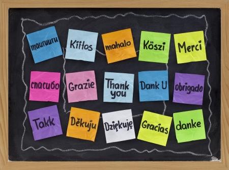 gratitudine: Ringrazio in sedici lingue - colorful sticky note sulla lavagna con il bianco gesso sbavature  Archivio Fotografico