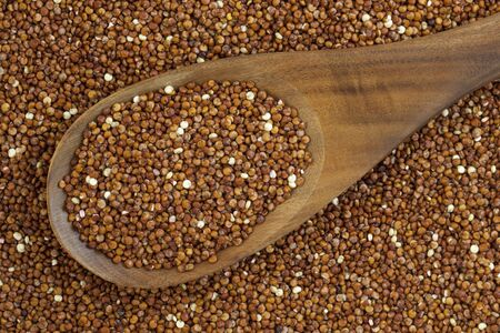 wooden spoon and background of red quinoa grain Stock Photo - 7622774