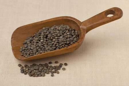 French green lentils on a rustic wooden scoop against tablecloth Stock Photo - 7765913