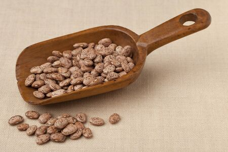 pinto bean: spotted pinto beans on a rustic wooden scoop against tablecloth