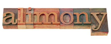 parola di alimenti in blocchetti di stampa di legno dello scritto tipografico d'annata, macchiati dagli inchiostri di colore, isolati su bianco
